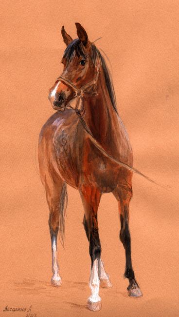 Лошадь Бронза